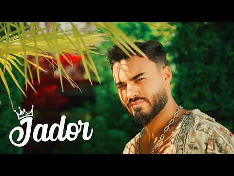Aseara dansai singura – Jador versuri