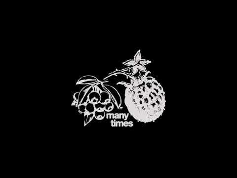Many times – Dijon lyrics